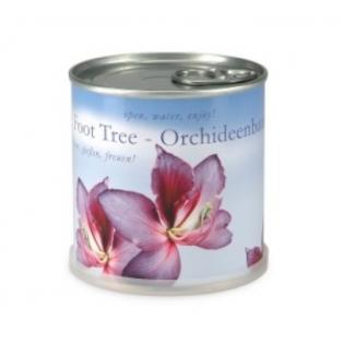 macflowers-taimekonserv-orhidee.jpg