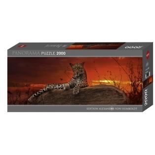 Heye-pusle-2000tk-punane-koidik-leopard.jpg