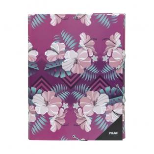 milan-dokumendiaaned-hibiscus.jpg