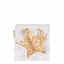 ARTE kinkekott Jõul kuldne täht 20x20x11cm