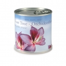 MacFlowers taimekonserv Orhidee*